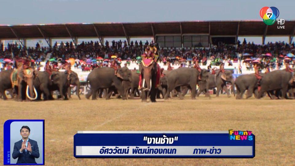 สะเก็ดข่าว : งานช้าง