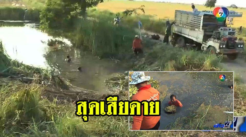ชาวนาทุกข์ซ้ำ รถบรรทุกข้าวไหลลงน้ำ ลงไปงมสุดเสียดาย ส่งขายไม่ได้ ขาดทุนยับ