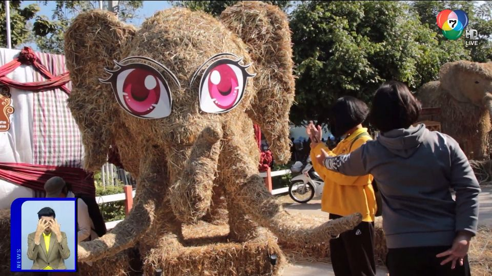 สะเก็ดข่าว : หุ่นฟางช้าง