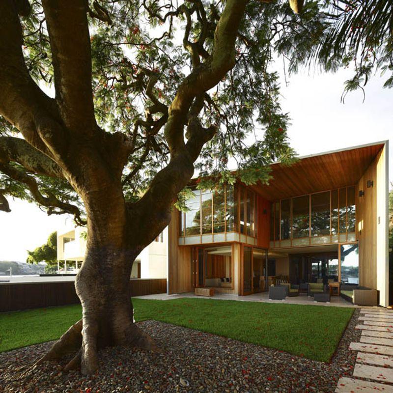 แก้เคล็ดเสริมดวง ต้นไม้ใหญ่หน้าบ้าน