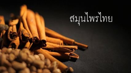 TCELS - ยาไทยจากธรรมชาติ